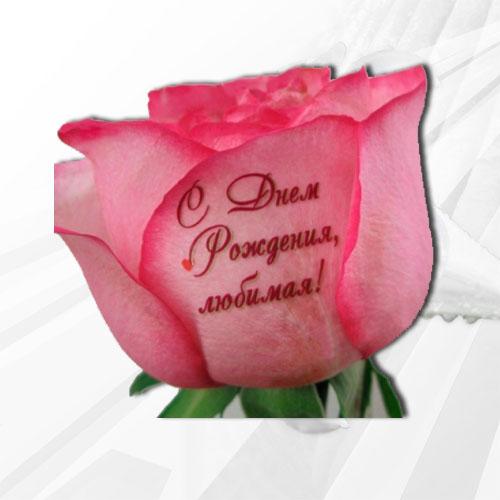 Надпись на открытке к цветам дочери, анимация