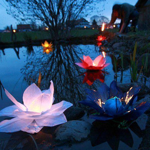 Светящиеся цветы - cvety