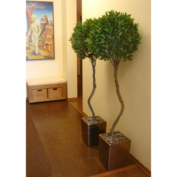 Искусственные деревья-бонсаи - dereviya-bonsai
