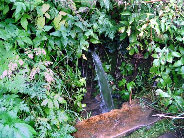 Продажа воды с источника - voda