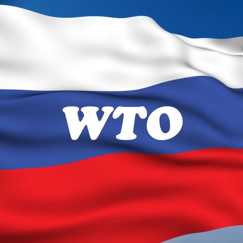 Россия вступает в ВТО. Все «ЗА» и «ПРОТИВ» - wto