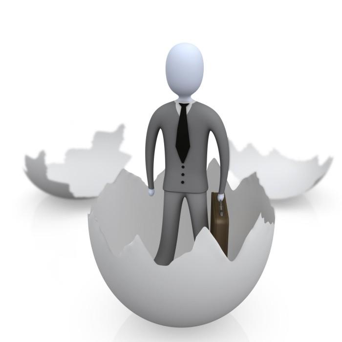 Фирма - ООО - бизнес - как стать владельцем? - business firma