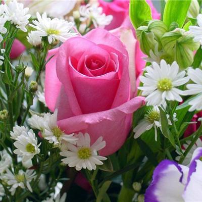 Нужен бизнес план цветочной палатки) - cvety