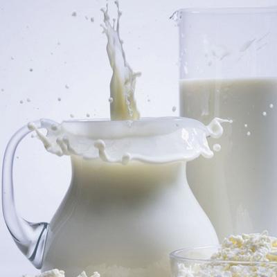 Как открыть молочную палатку - molochnay