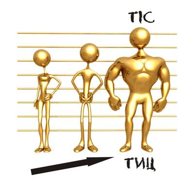 Что такое ТИЦ и PR, для чего они нужны и как их поднять - TIC
