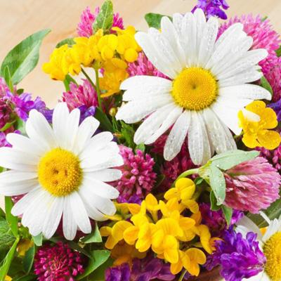 Букетики из полевых и садовых цветов - polevye
