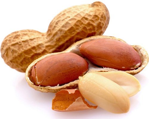 Арахис, выращивание арахиса как бизнес - arahis