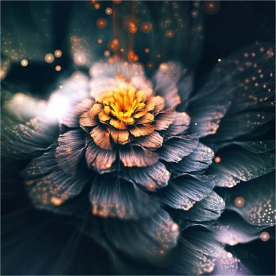Как открыть цветочную палатку - cvetochnaya_palatka
