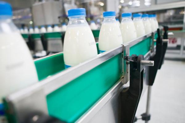 Как открыть свой молочный завод - molochnyi_savod
