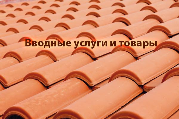 vvodnye_uslugi