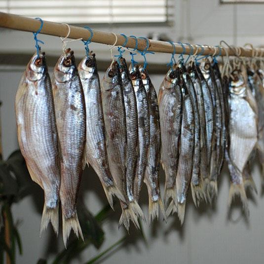 Вяление рыбы! - ryiba