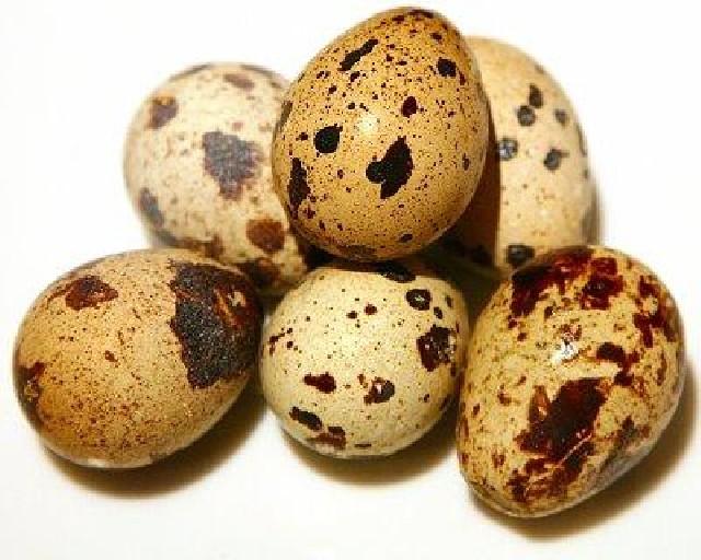 Перепелиные яйца. - yaica