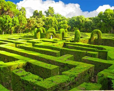 Лабиринт озелененый с припяствиями - labirint_is_seleni